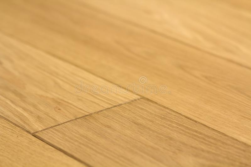 Natural light brown wooden parquet floor boards. Sunny soft yellow texture, copy space perspective background.  stock image