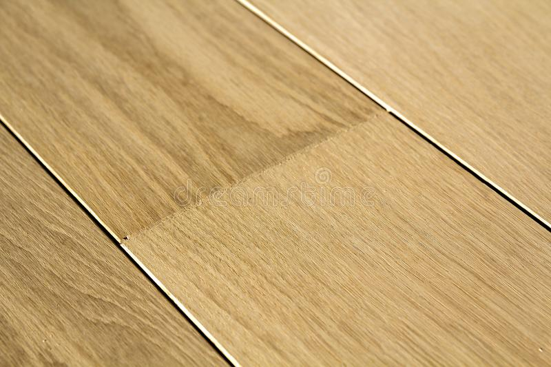 Natural light brown wooden parquet floor boards. Sunny soft yellow texture, copy space perspective background.  stock photos