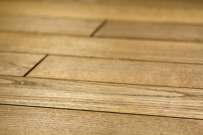 Natural light brown wooden parquet floor boards. Sunny soft yellow texture, copy space perspective background royalty free stock images
