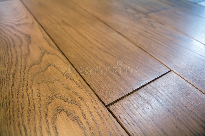 Natural light brown wooden parquet floor boards. Sunny soft yellow texture, copy space perspective background.  royalty free stock image