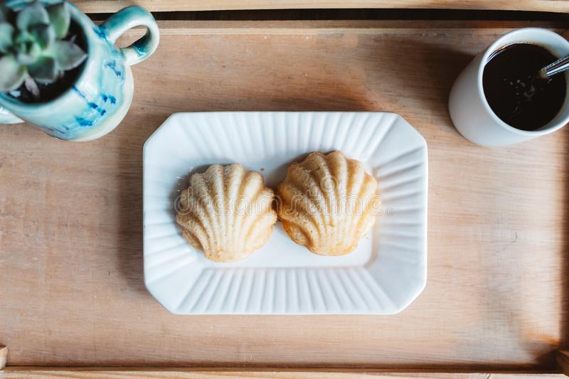 Natural light scones, coffee and plant stock photography
