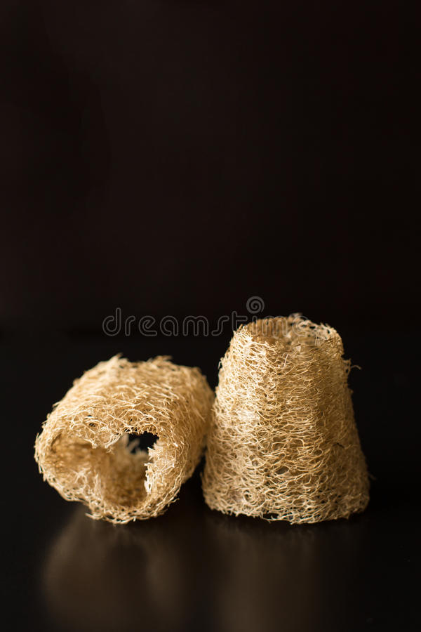 Natural Loofah Sponge For Spa stock image