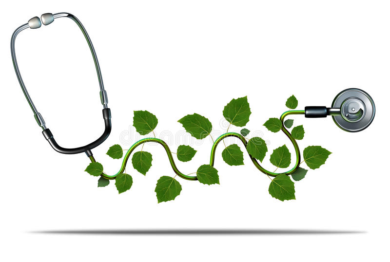Natural Medicine. And alternative therapy concept as a doctor stethoscope with plant leaves growing on the medical equipment as a symbol for green health royalty free illustration