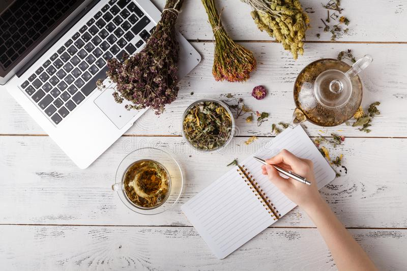 Natural medicine. Herbs, medicinal bottles and old recipe book with copy space for your text royalty free stock photo
