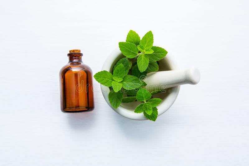 Natural Mint Essential Oil in a Glass Bottle. With Fresh Mint Leaves in white porcelain mortar on white wooden background.n stock photo