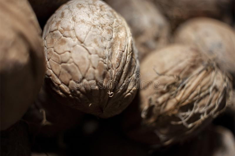 Natural nut. Dark background texture pattern. Abstract walnuts pattern background. Walnuts pattern background. Inshell walnuts. stock photography