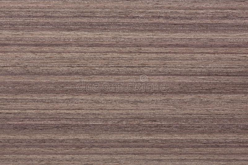 Natural nut veneer texture for your ideal design. stock image