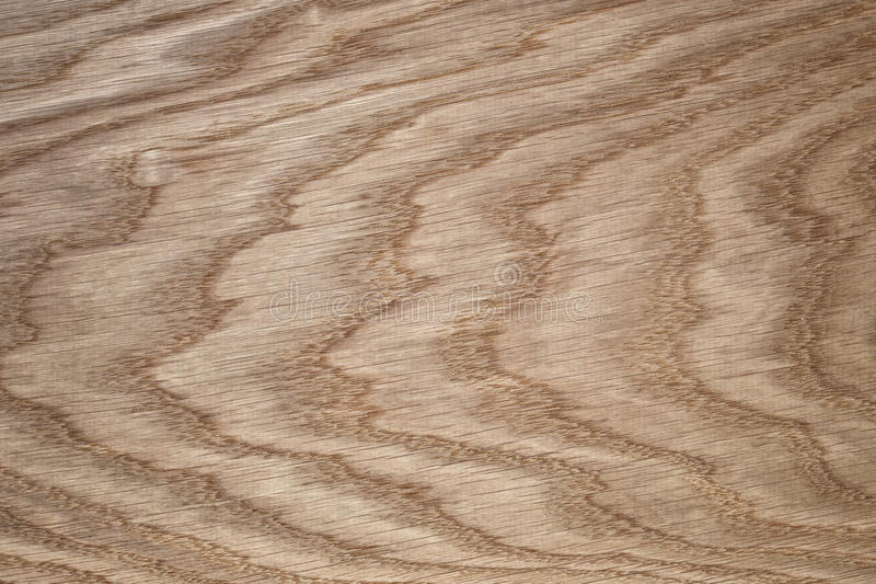 Natural oak texture for background stock photo