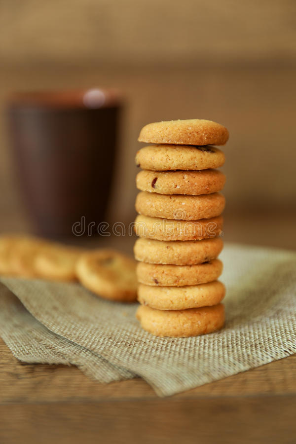 Natural orange cookies with cranberries. royalty free stock image
