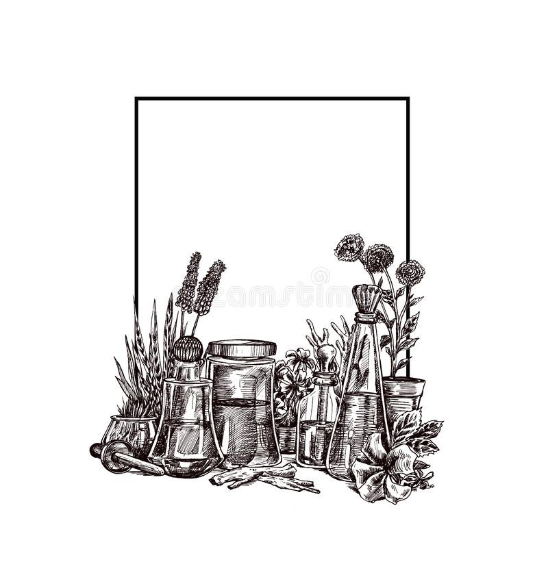 Natural organic botany and scientific glassware, Alternative herb medicine, Natural skin care beauty products. Research and development concept. Hand Draw vector illustration