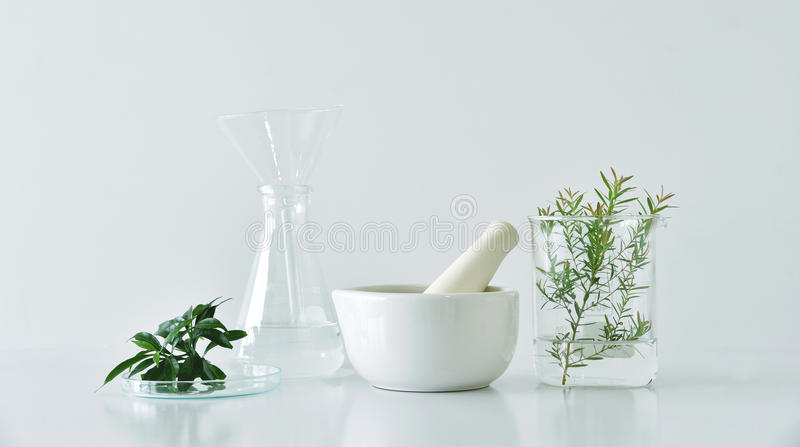Natural organic botany and scientific glassware, Alternative herb medicine, Natural skin care beauty products. stock photos