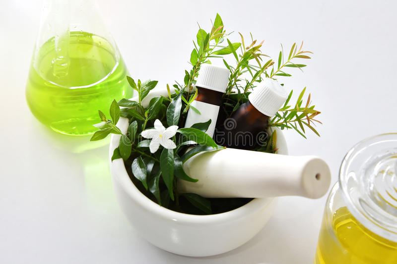 Natural organic botany and scientific glassware, Alternative herb medicine, Natural skin care beauty products. royalty free stock images