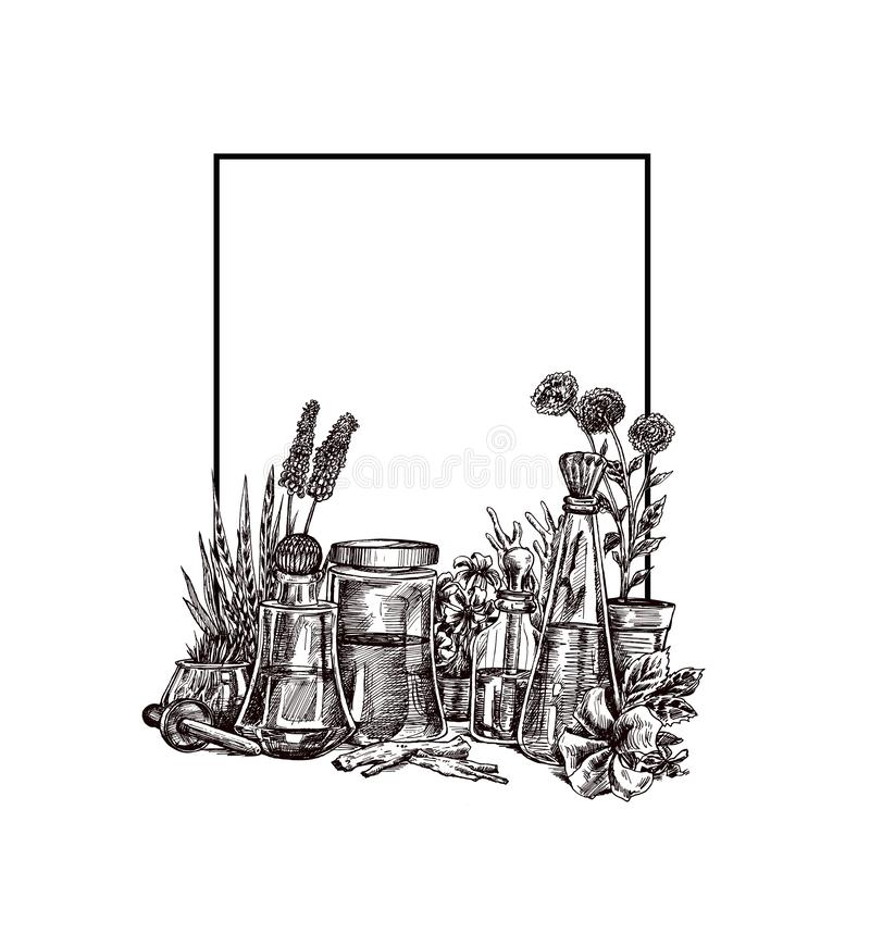 Natural organic botany and scientific glassware, Alternative herb medicine, Natural skin care beauty products. Research and development concept. Hand Draw stock illustration