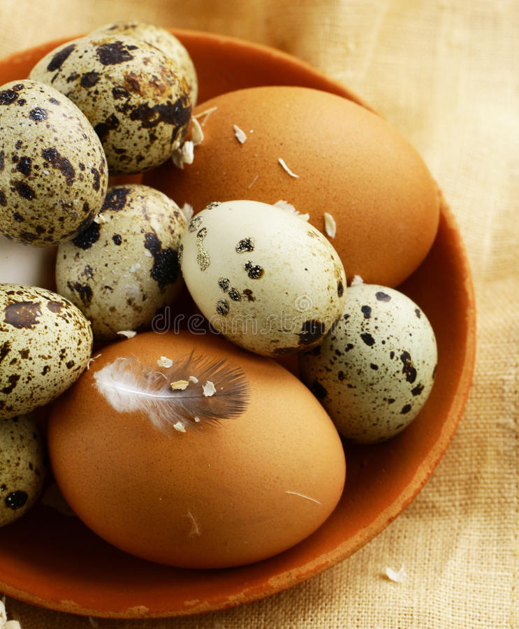 Natural organic eggs. On a wooden table royalty free stock photography