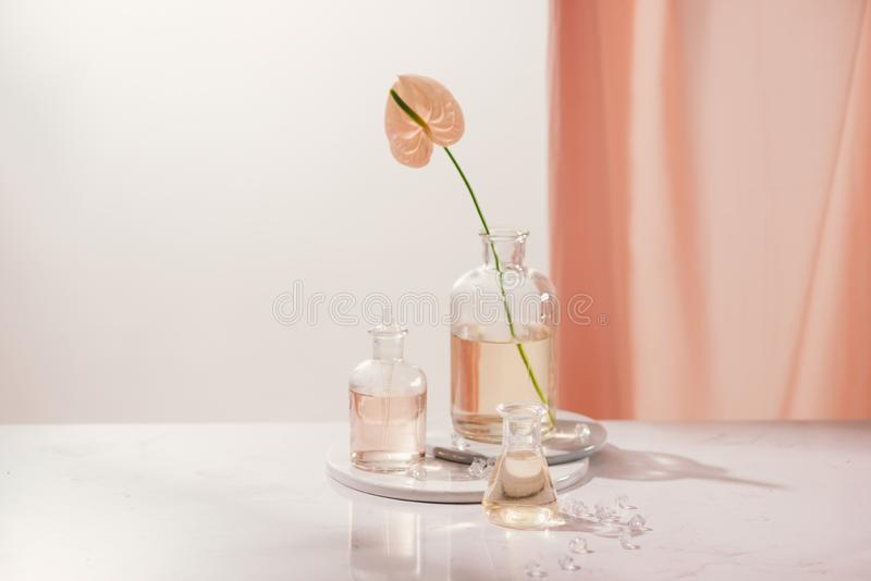 Natural organic extraction, Flower aroma essence solution in laboratory royalty free stock images