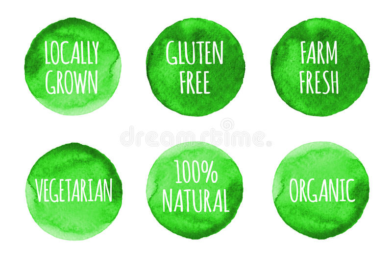 Natural, organic food, bio, eco labels and shapes on white background. Hand drawn watercolor stains set stock illustration