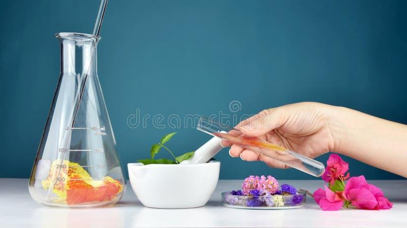 Natural organic medicine and healthcare, Alternative plant medicine, Mortar and herbal extraction. Natural organic medicine and healthcare, Alternative plant stock image