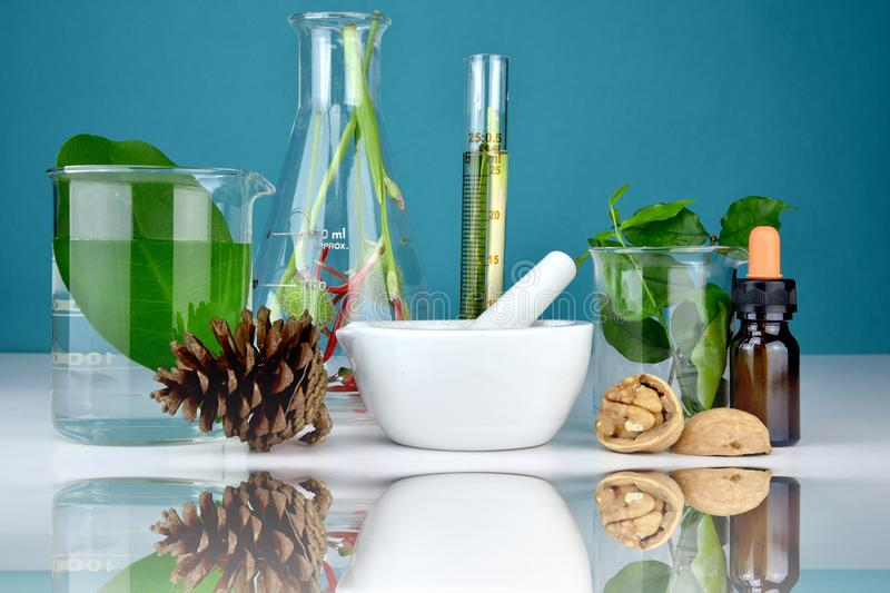 Natural organic medicine and healthcare, Alternative plant medicine. Natural organic medicine and healthcare, Alternative plant medicine, Mortar and herbal royalty free stock photo