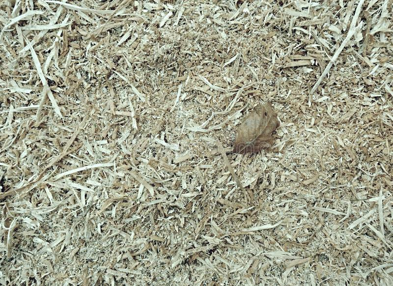 Natural organic mulch with wood chips bark and leaves royalty free stock image