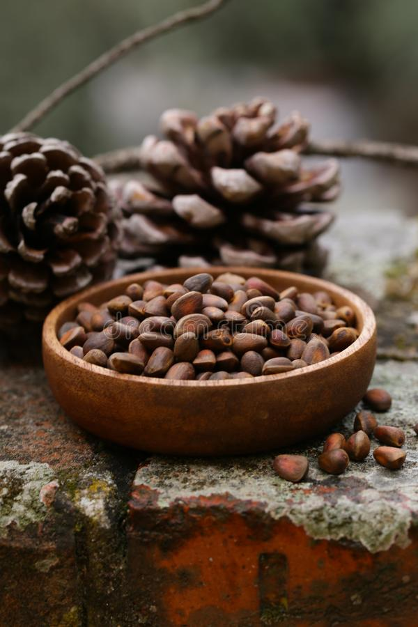 Organic pine cones and nuts stock photos