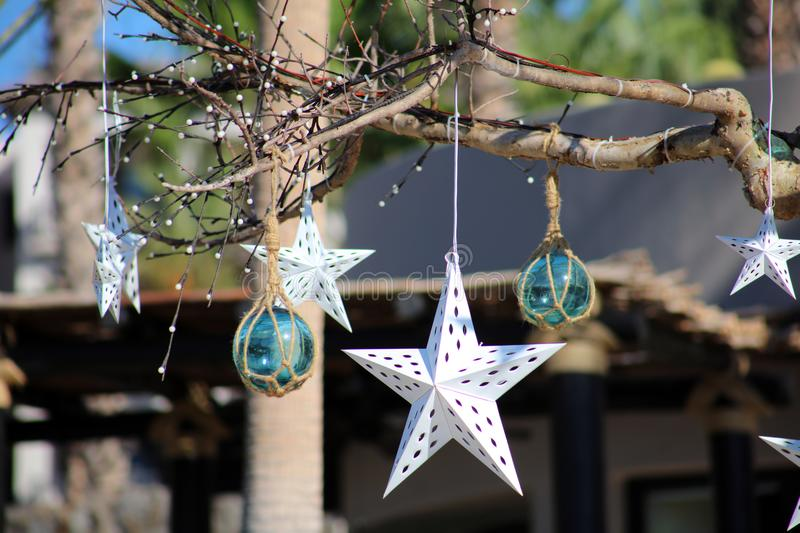 Natural original Christmas ornaments hanging in trees. In Los Cabos Mexico resort stock images