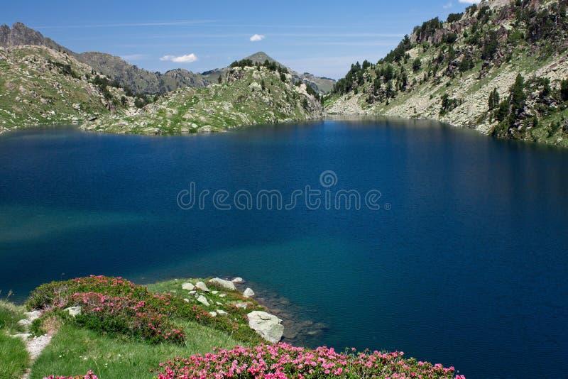 Natural Park of Sant Maurici. stock photos
