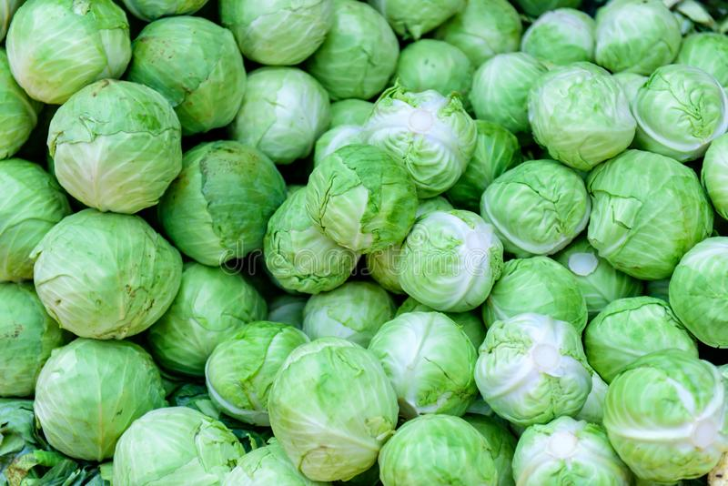 A natural pattern - fresh leafy green cabbages on the farmers` market. White cabbage as a background stock images