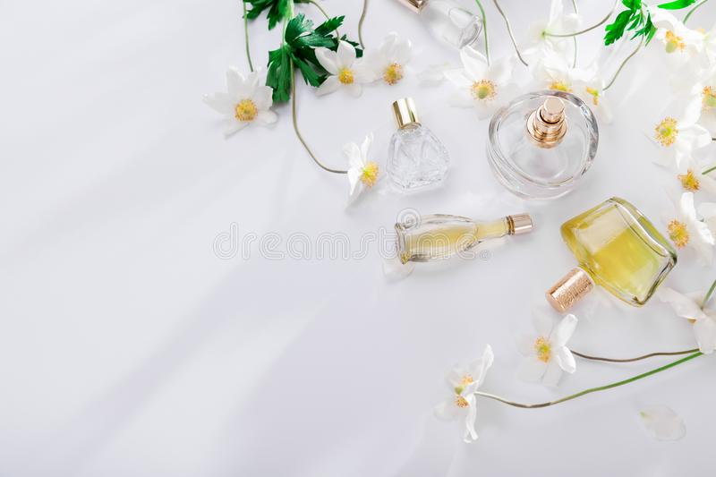 Natural perfume concept. Bottles of perfume with white flowers. Floral fragrance. Natural perfume concept. Bottles of perfume with white flowers on white stock image