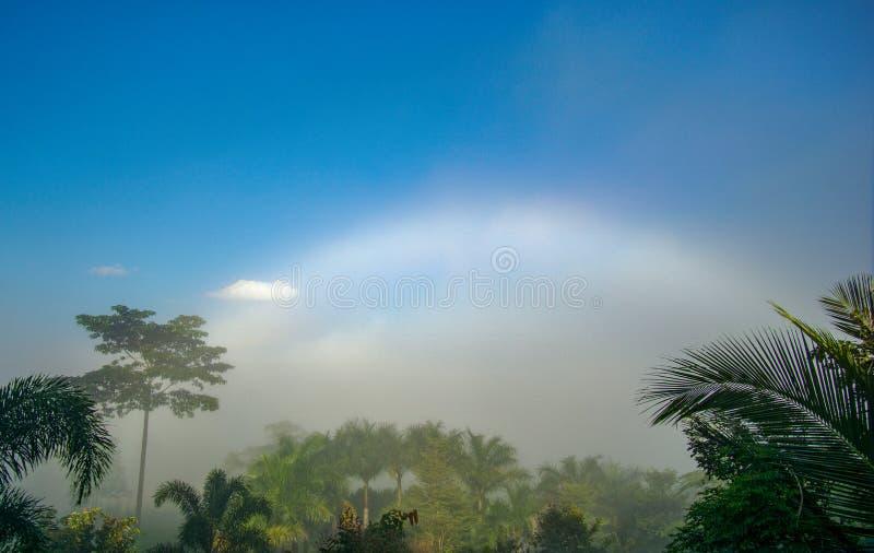 Natural phenomena. Fogbow or White rainbow occurs above the  mist. Natural phenomena. Fogbow or White rainbow occurs above the mist stock images