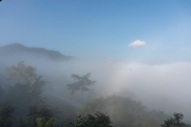 Natural phenomena. Fogbow or White rainbow occurs above the  mist. Natural phenomena. Fogbow or White rainbow occurs above the mist stock photos