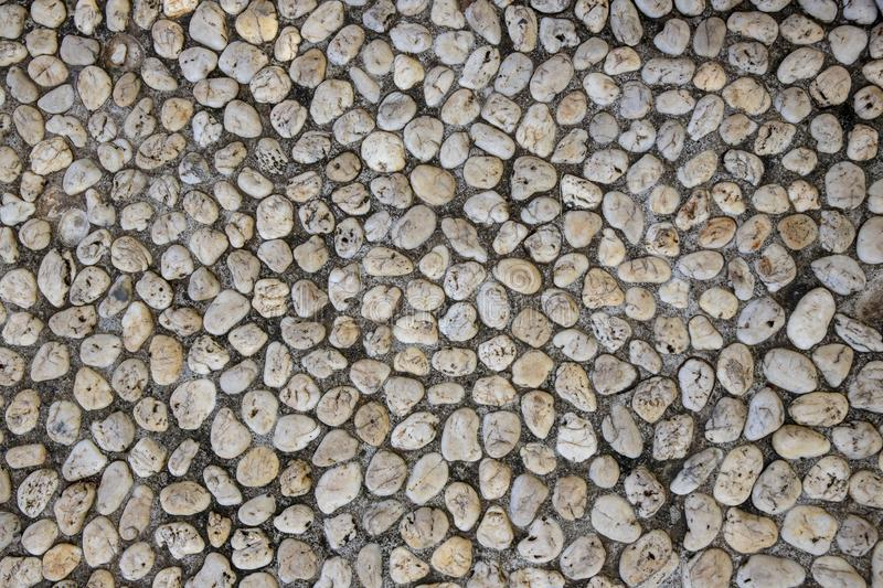 Natural photo texture of tiny pebble, top view background. White pebbles in grey sand top view. Rounded marble paving stock images