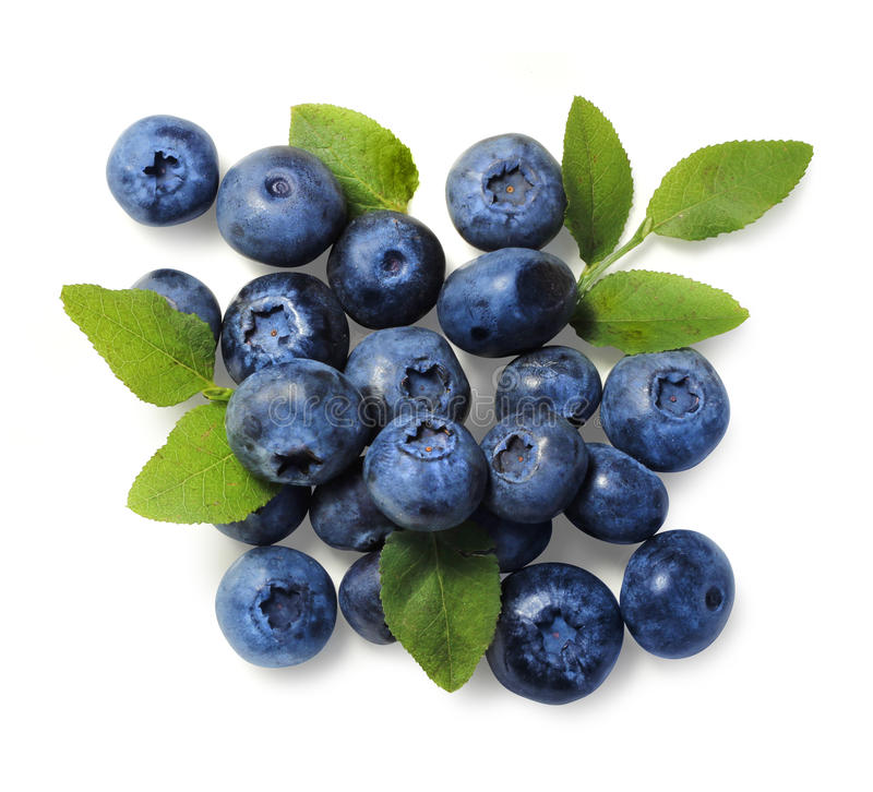 Free Natural Picked Blueberries Isolated Royalty Free Stock Image - 43089906