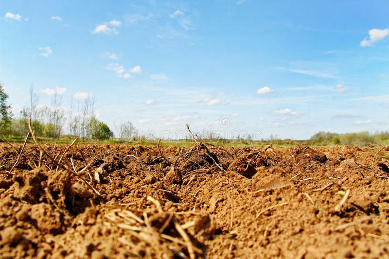 Download Natural Plowed Field. Stock Photos - Image: 24809063