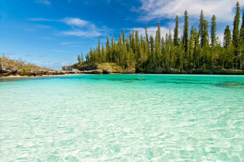 Natural pool of Oro Bay, Isle of Pines. New Caledonia royalty free stock images