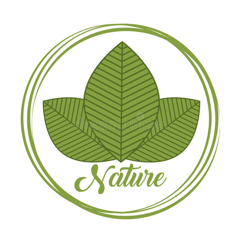 Natural products design. Seal stamp of nature concept with leaves icon over white background. colorful design. illustration vector illustration
