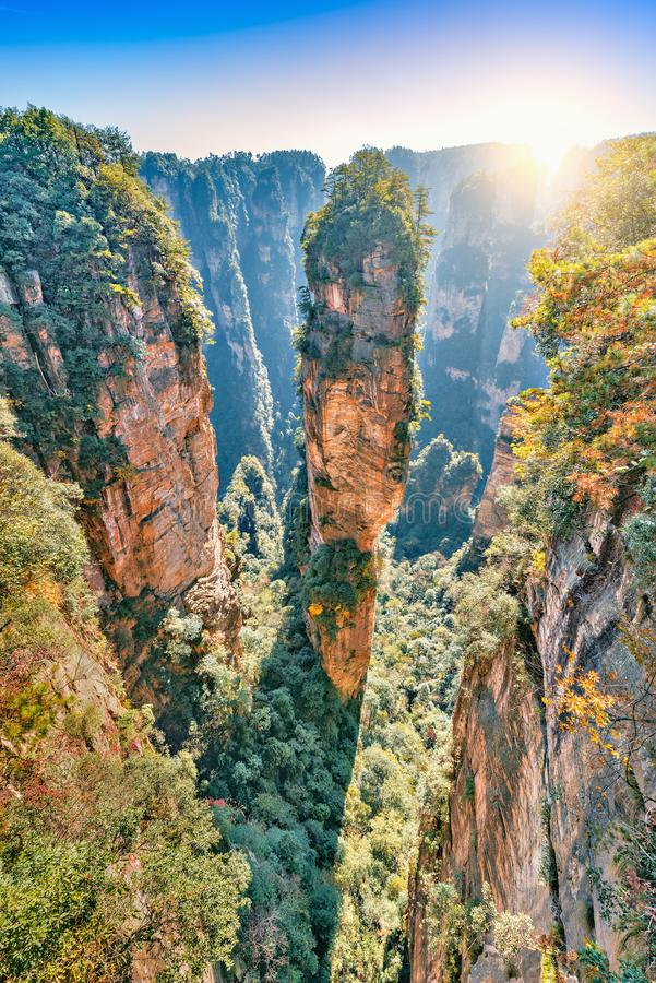 Natural quartz sandstone pillar the Avatar Hallelujah Mountain. stock images