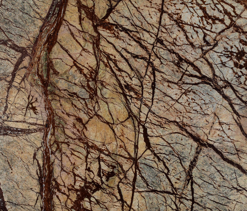 Natural Rain Forest Brown marble texture stock images
