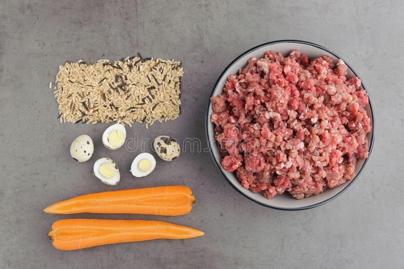 Natural raw ingredients for pet food on grey background. Flat lay royalty free stock photo