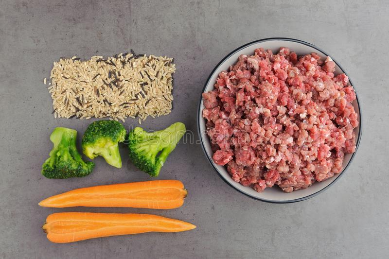 Natural raw ingredients for pet food on grey background. Flat lay stock photography