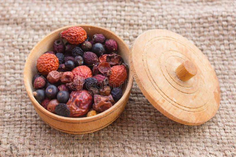 Natural remedy for strengthening immunity. Useful berries. Dried summer berries. People`s remedy. Berries for Morse. Blueberry, dog rose, mountain ash, juniper stock image