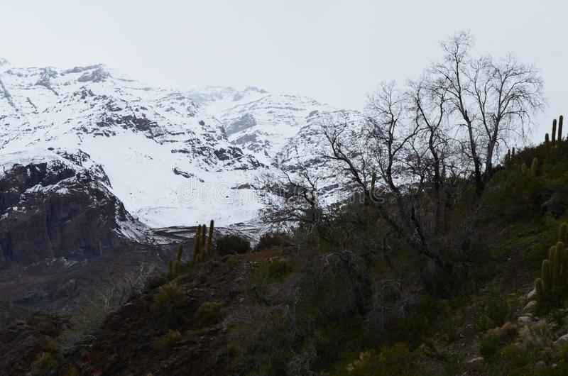 Río Blanco National Reserve, central Chile, a high biodiversity valley in Los Andes stock photo