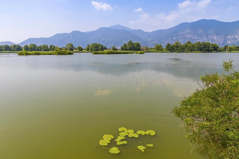 Natural Reserve Torbiere del Sebino, provincie Brescia, Italië stock foto