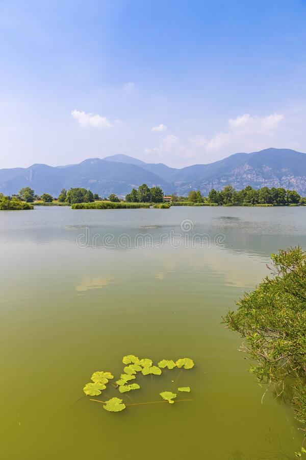 Natural Reserve Torbiere del Sebino, provincie Brescia, Italië stock afbeelding