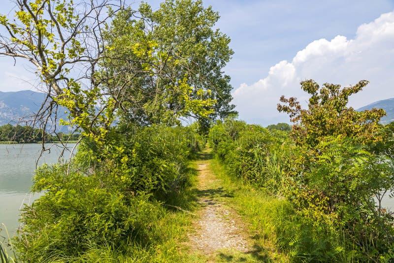 Natural Reserve Torbiere del Sebino, provincie Brescia, Italië stock afbeeldingen
