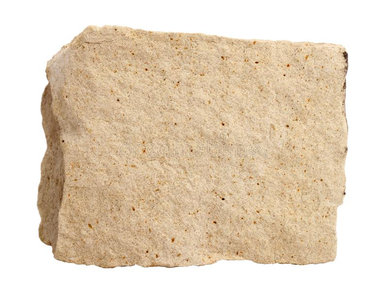 Natural sample of foraminiferal ooze limestone - organogenic sedimentary rock, on white background royalty free stock image