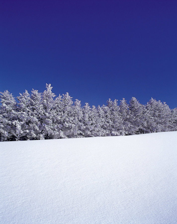 Natural Scenery stock images