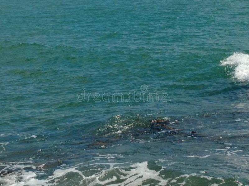 Natural sea royalty free stock photo
