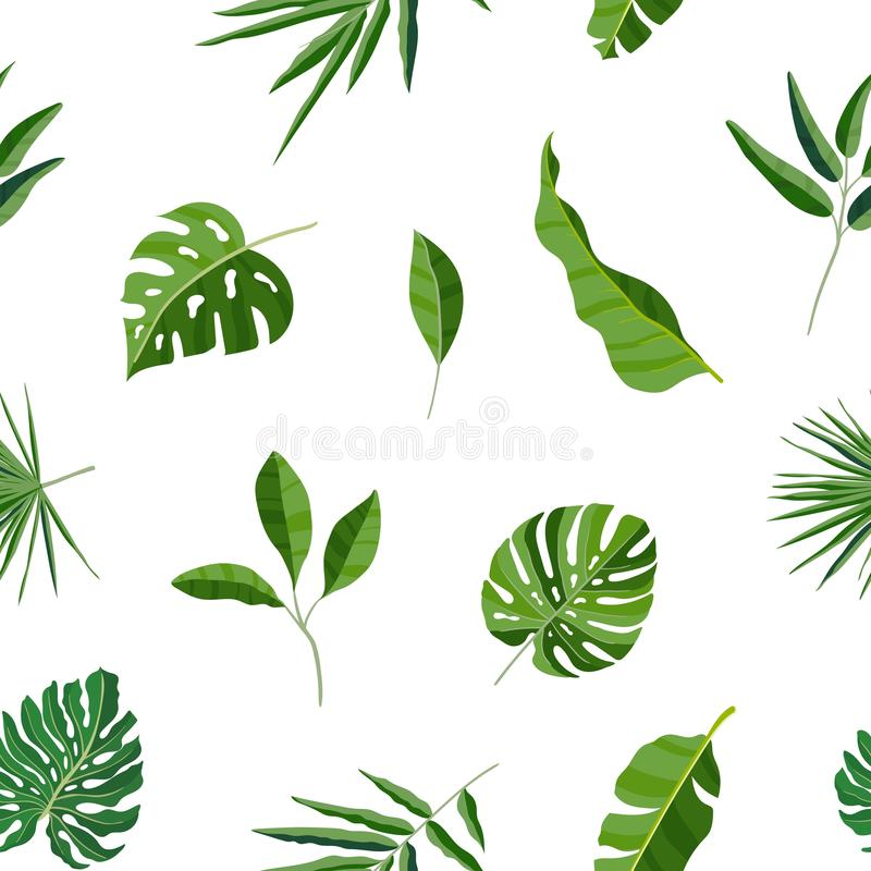 Natural seamless pattern with green tropical leaves or scattered exotic foliage of jungle plants on white background stock illustration