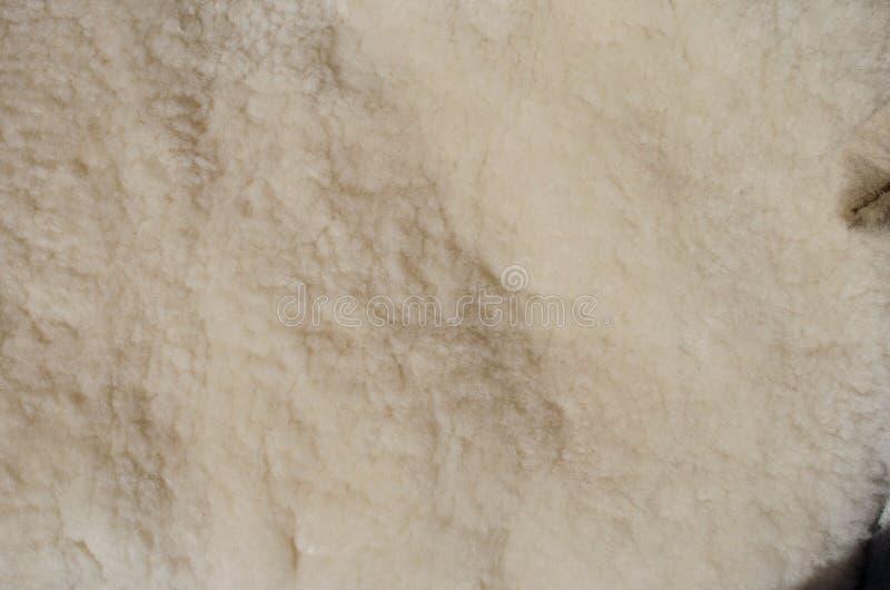 Natural sheepskin pelts royalty free stock photo