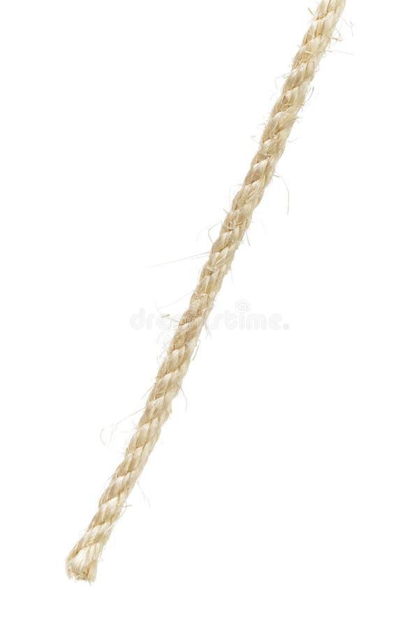 natural sisal rope end stock image - Sisal Rope
